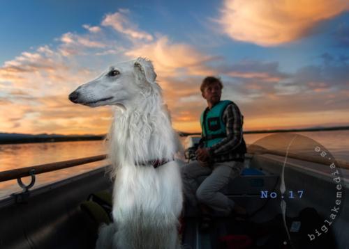 dogphoto-borzoi-sighthound-dogphotography